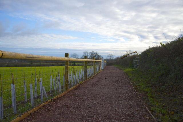 Tor Hill footpath, December 2013